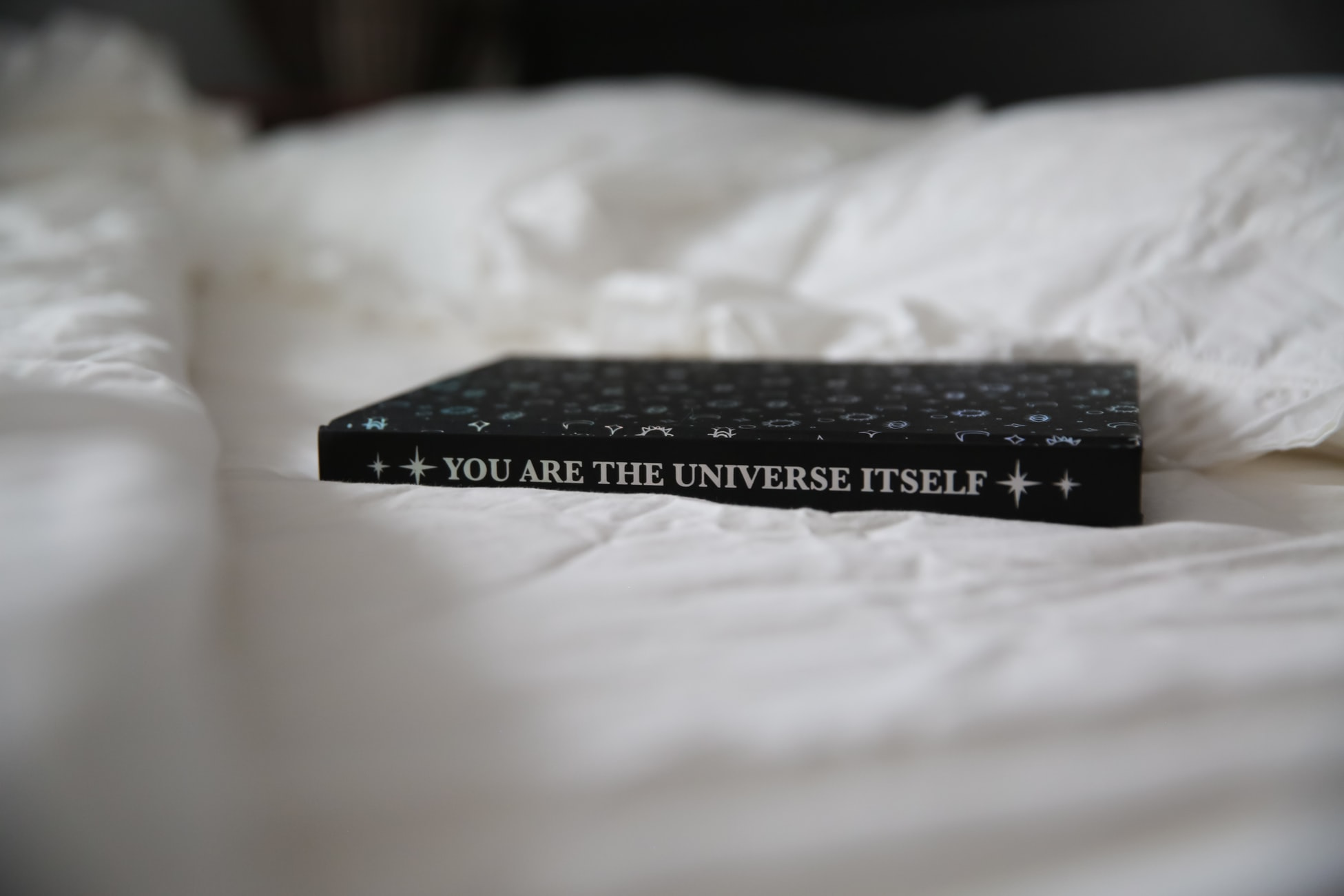 You Are the Universe Itself Book